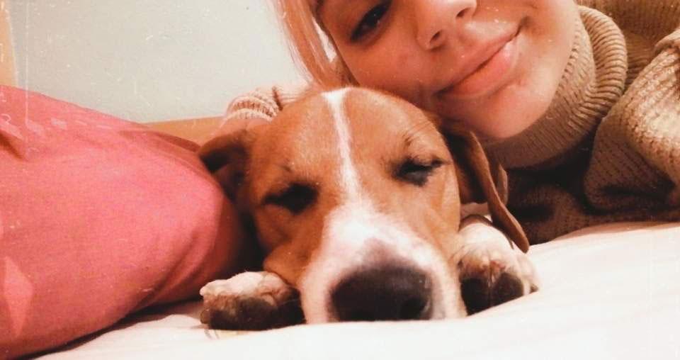 djevojčica grli psa smeđe boje koji leži