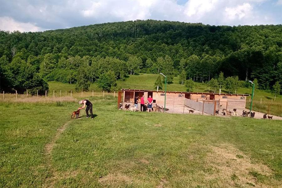 Silver Dog Srebrenica - sklonište za pse